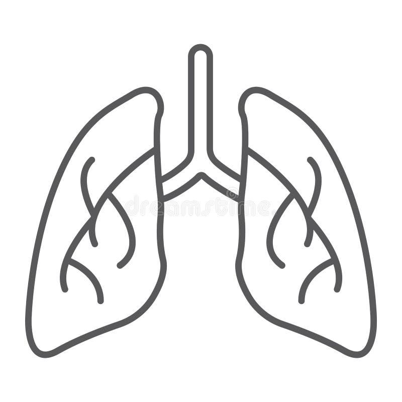 Linha fina ícone dos pulmões, biologia e corpo, sinal do órgão, gráficos de vetor, um teste padrão linear em um fundo branco ilustração stock