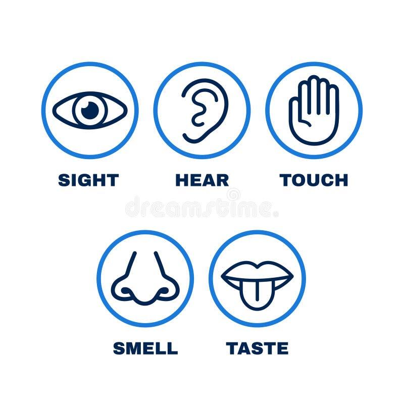 Linha grupo do ícone de cinco sentidos humanos ilustração stock