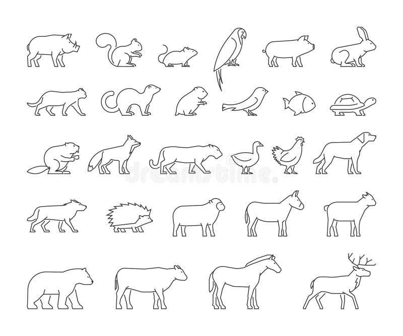 Linha grupo do vetor de animais domésticos e selvagens ilustração royalty free