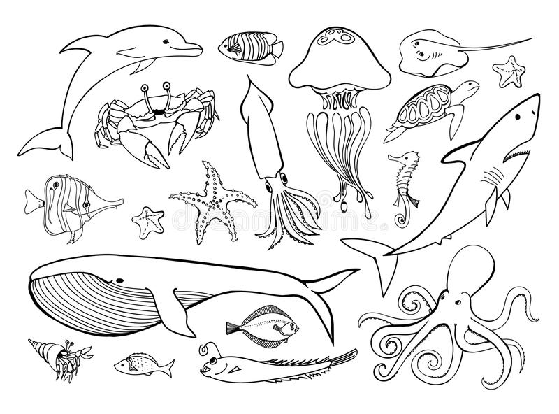 Linha grupo tirado mão dos animais de mar dos ícones ilustração royalty free