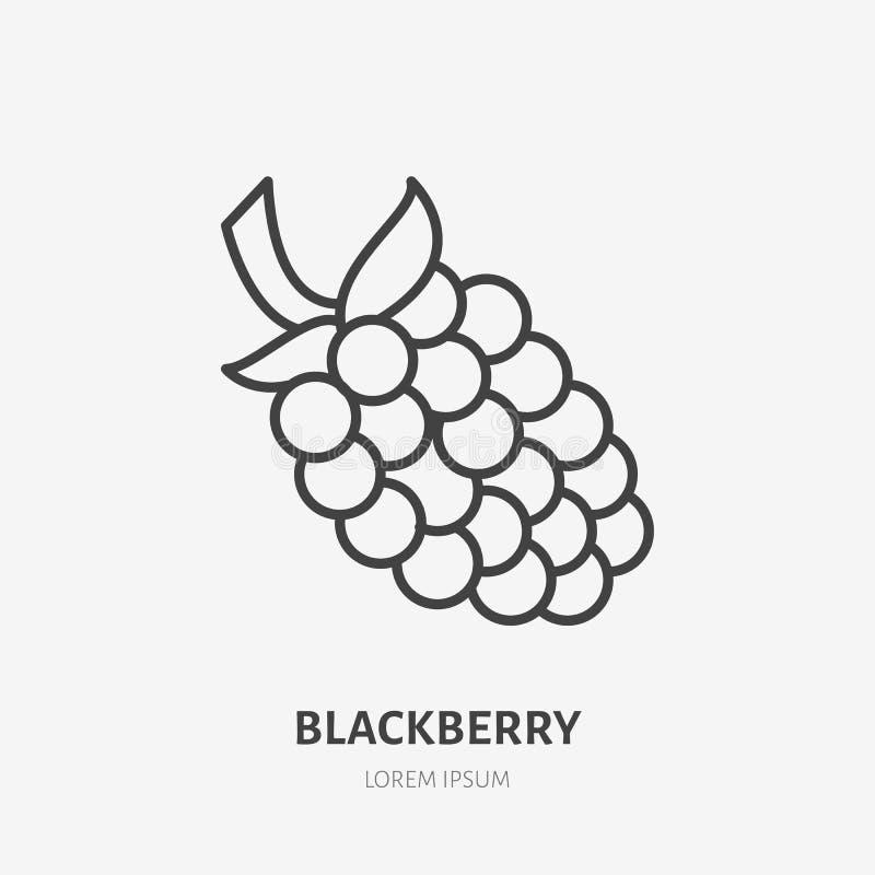 Linha lisa ícone de Blackberry, sinal da baga da floresta, logotipo saudável do alimento Ilustração da amora preta, amora para o  ilustração royalty free