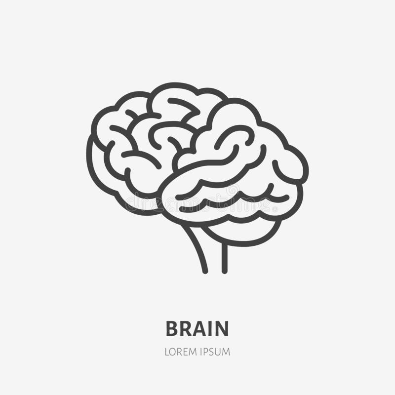 Linha lisa ícone do cérebro Pictograma fino do vetor do órgão interno humano, ilustração do esboço para a clínica da neurologia ilustração royalty free