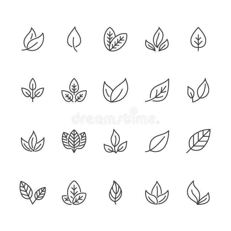Linha lisa ícones da folha A planta, árvore sae de ilustrações Sinais finos do alimento biológico, material natural, bio ingredie ilustração stock