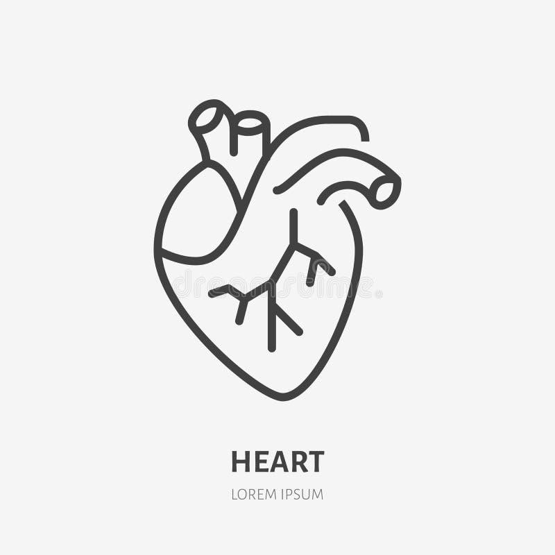 Linha lisa ?cone do cora??o Pictograma fino do vetor do órgão interno humano, ilustração do esboço para a clínica da cardiologia ilustração do vetor