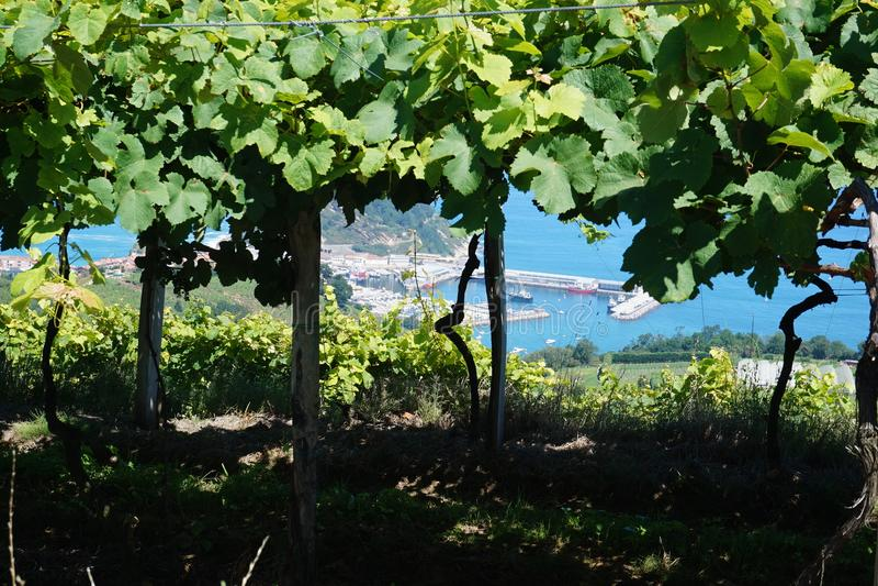 Linha litoral San Sebastian próximo, Espanha do norte foto de stock royalty free