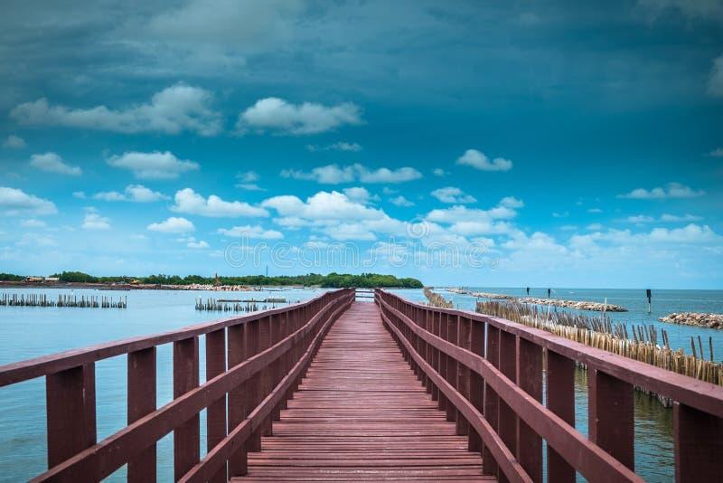 A linha onda da ponte e do bambu da extremidade do slow down impede litoral er fotografia de stock
