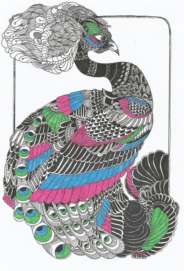 Linha original desenho do pavão da arte ilustração stock