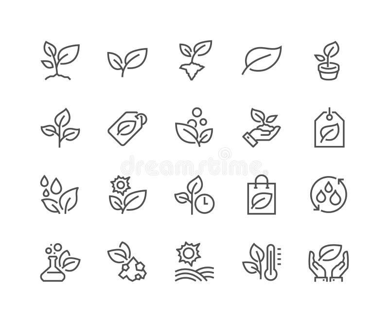 A linha planta ícones ilustração royalty free