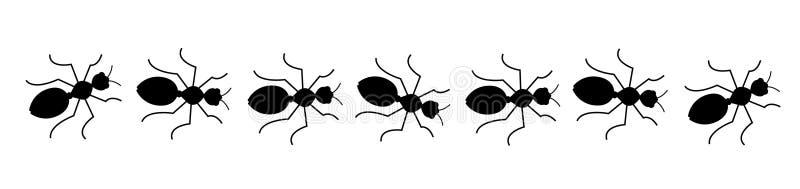 Linha preta das formigas ilustração royalty free
