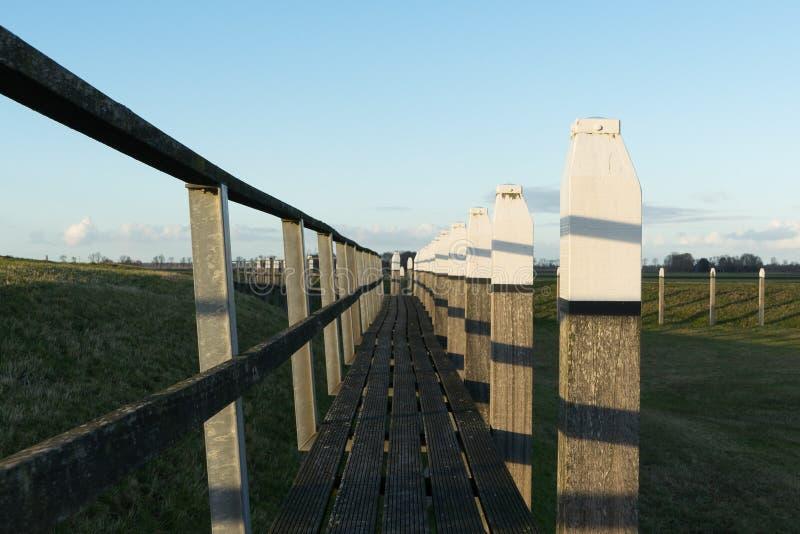 Linha principal céu azul do trajeto de madeira velho Com grama verde da natureza em torno dela imagens de stock royalty free