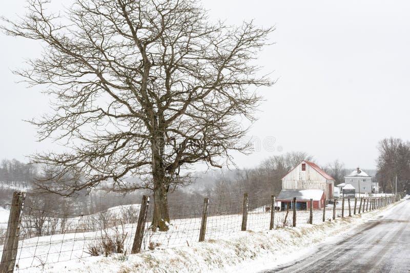 Linha principal da cerca da cena do inverno foto de stock