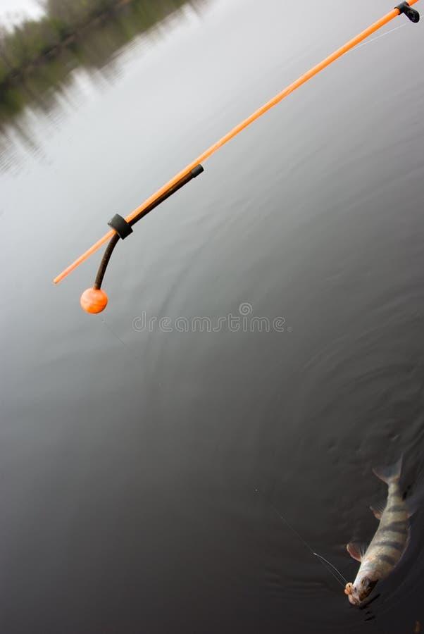 Linha Tornada Mais Pesada (para A Parte-pesca) Fotos de Stock Royalty Free