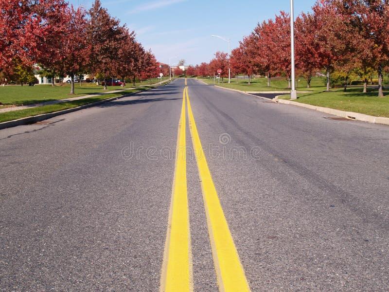 Linhas amarelas dobro em uma estrada fotografia de stock