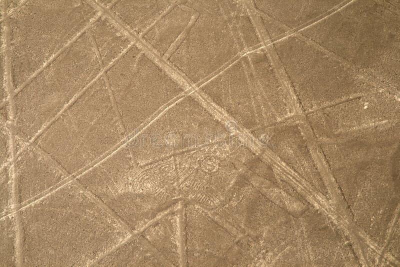Linhas de Nazca, Peru - olhos ou escorpião Hypnotized fotografia de stock royalty free
