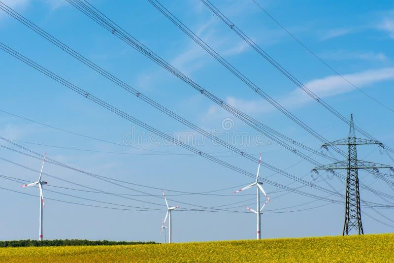 Linhas de transmissão de energia no campo da violação de semente oleaginosa de florescência fotografia de stock royalty free