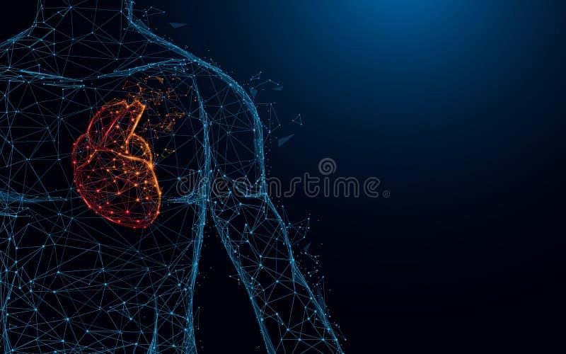 Linhas do formulário da anatomia do coração e triângulos humanos, rede de conexão do ponto no fundo azul ilustração do vetor