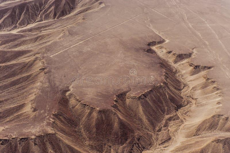 Linhas e geoglyphs de Nazca foto de stock