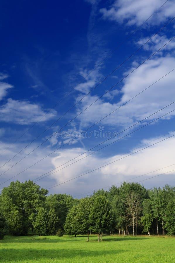 Linhas eléctricas no campo fotos de stock royalty free