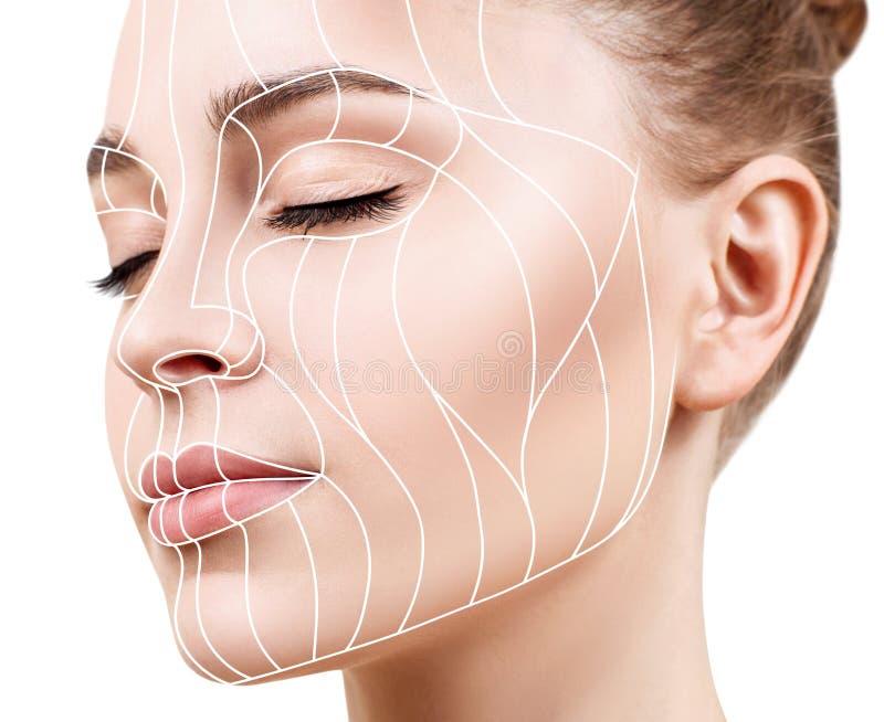 Linhas gráficas que mostram o efeito de levantamento facial na pele imagem de stock