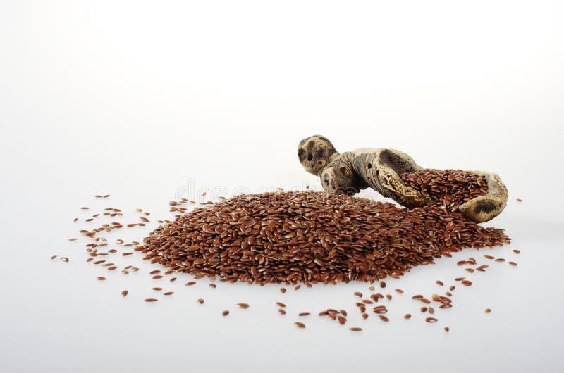 Linho-semente com uma parte de madeira colher-como imagens de stock