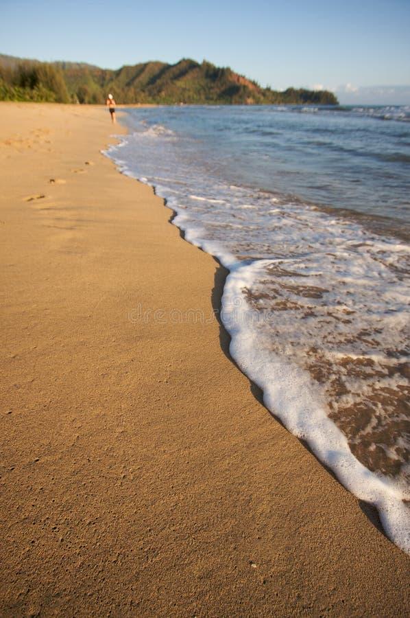 linia brzegowa biegacza plażowa fotografia royalty free