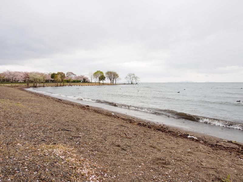 Linia brzegowa Jeziorny Biwa na deszczowym dniu, Nagahama, Japonia fotografia stock