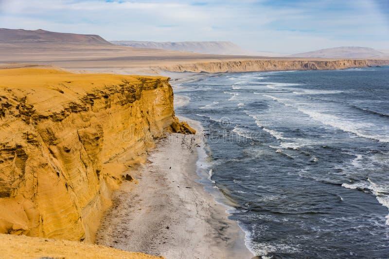 Linia brzegowa Paracas Krajowa rezerwa, Peru obraz stock
