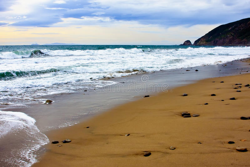 Download Linia Brzegowa Plażowy Ocean Pacific Obraz Stock - Obraz złożonej z ocean, zachodni: 13328233