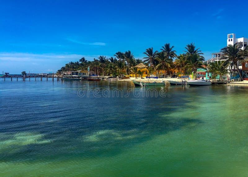 Linia brzegowa w Caye doszczelniaczu, Belize obraz royalty free