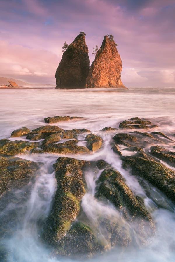 Linia brzegowa z morze stertami w zmierzchu czasie z czerwieni? i purpury za?wiecamy Kantor pla?a w Olimpijskim parku narodowym,  obrazy royalty free