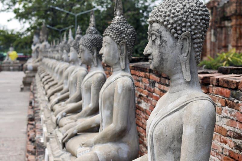 Linia Buddha wizerunki wśród antycznych świątyni ayuthaya w Thailand obrazy royalty free