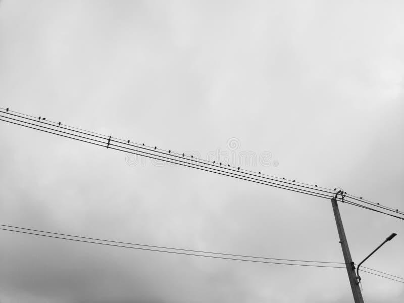 Linia energetyczna w kraju fotografia royalty free