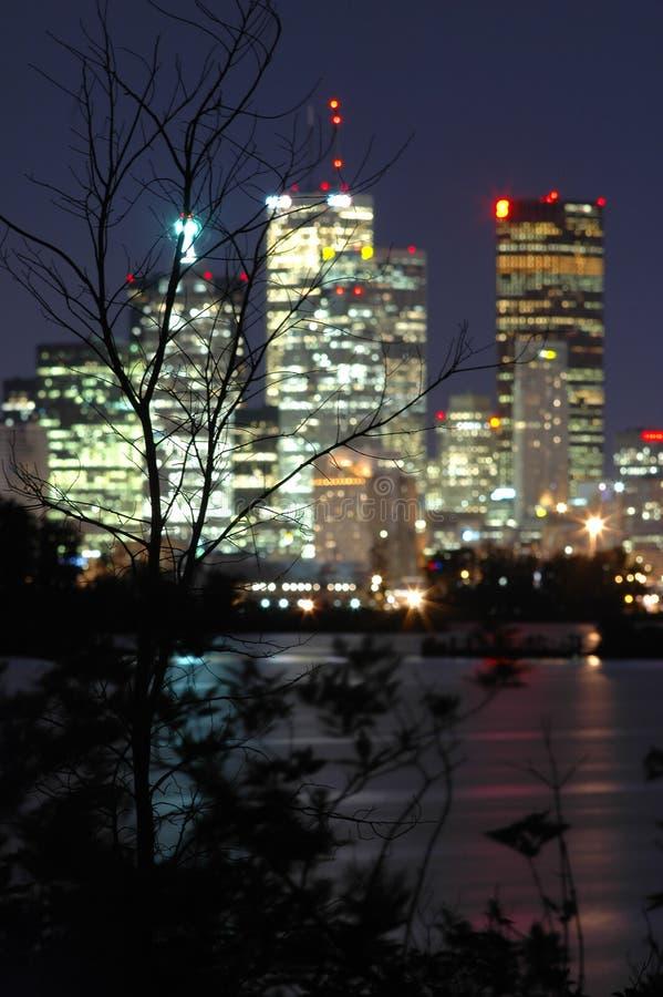 linia horyzontu nocy sceny zdjęcie stock