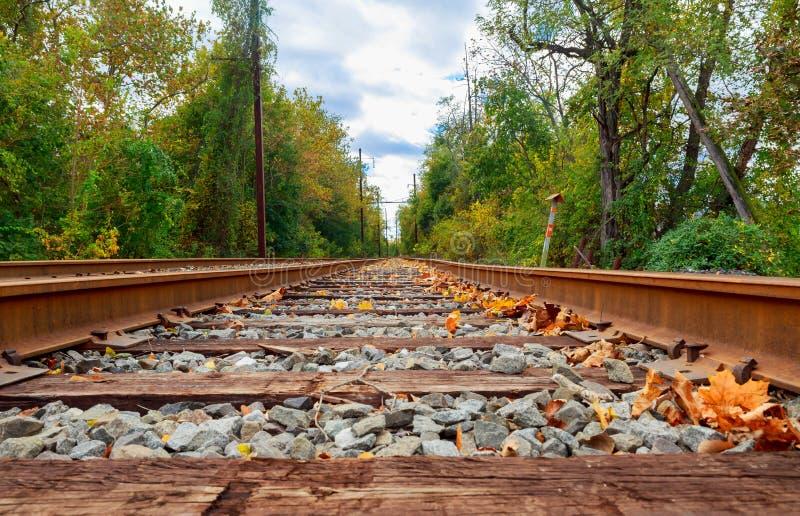Linia kolejowa horyzont w jesieni fotografia stock
