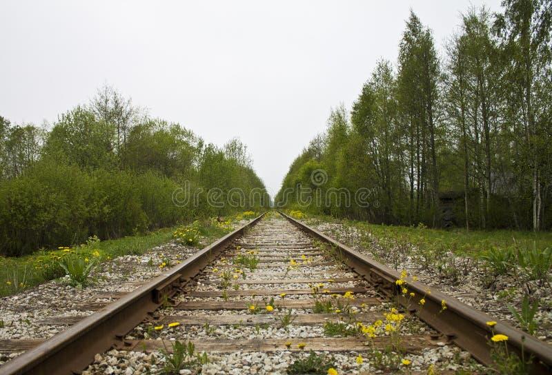 Linia kolejowa nigdzie w starej wiosce w Tallinn Estonia fotografia royalty free