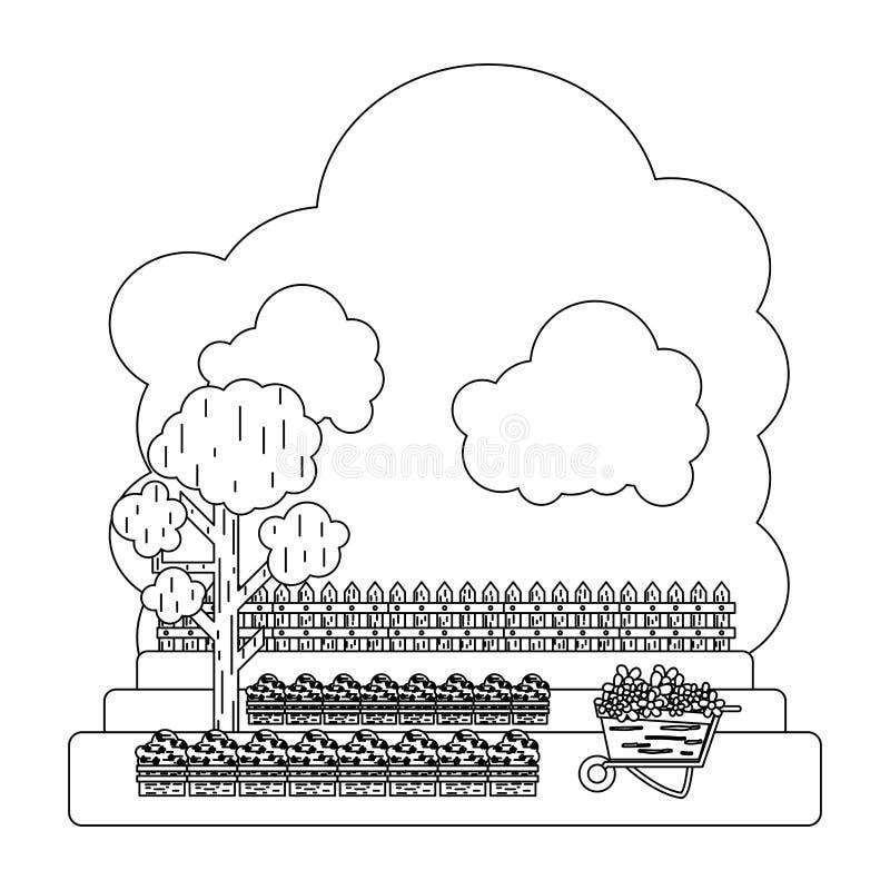 Linia kultywująca z drzewnym i drewnianym grillage gospodarstwem rolnym ilustracji