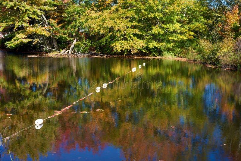 Linia pociesza przez rzekę obraz royalty free