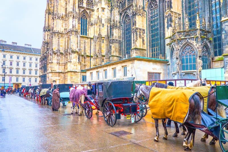 Linia turystyczni frachty w starym Wiedeń, Austria obraz royalty free