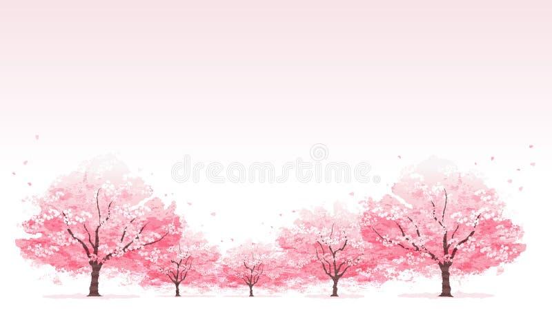 Linie des Kirschblüten-Baumhintergrundes vektor abbildung