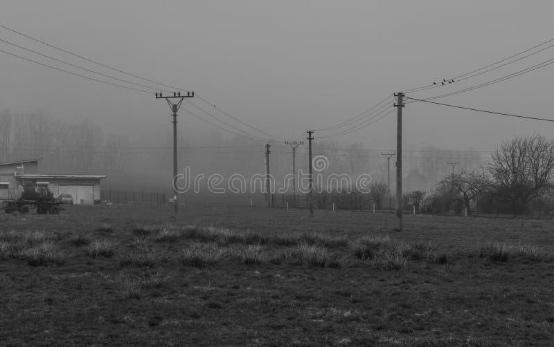 Linie energetyczne w mgiełce fotografia stock