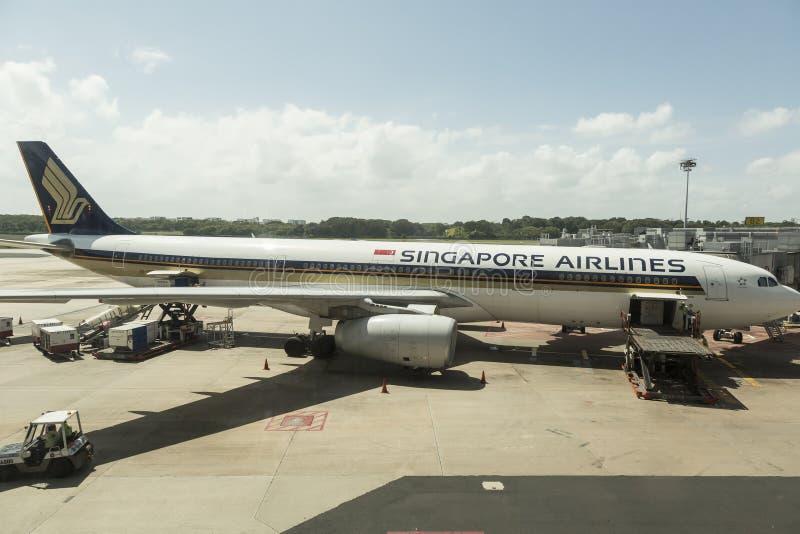 linie lotnicze Singapore zdjęcie royalty free