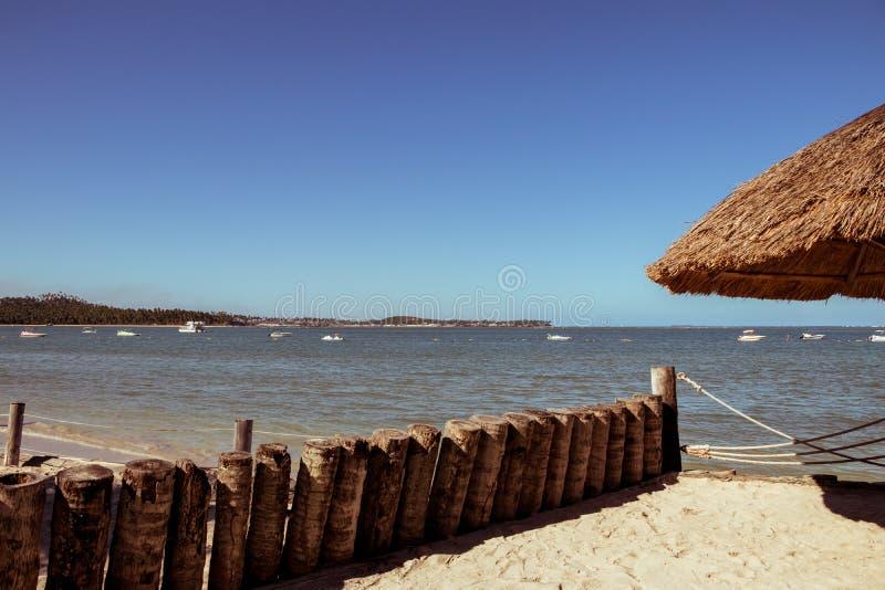 Linie von den Klotz, die in einem ruhigen Strandplatz stehen lizenzfreie stockbilder