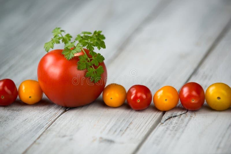 Linie von natürlichen organischen roten und gelben Kirschtomaten und -tomate mit frischer Petersilie auf die Oberseite auf einem  stockbild
