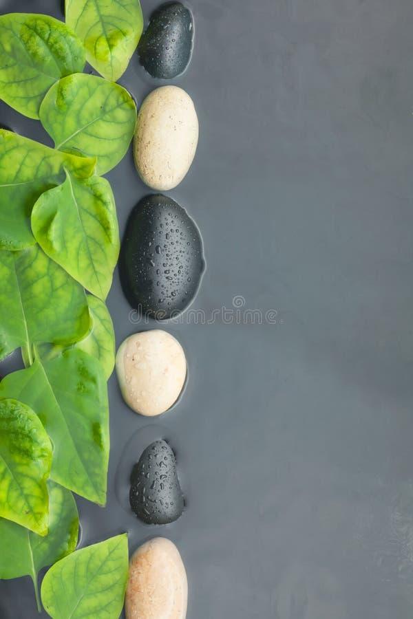 Linie Von Steinen Und Von Blattern Im Wasser Stockfoto Bild Von