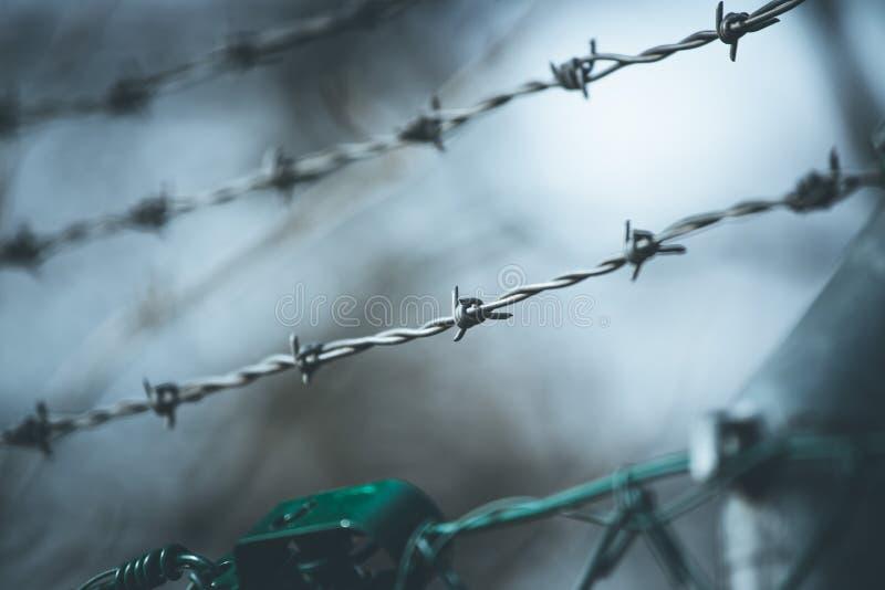 Linien des Stacheldrahts, zum der Grenze abzugrenzen lizenzfreie stockfotos