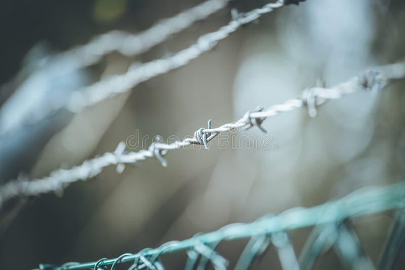 Linien des Stacheldrahts, zum der Grenze abzugrenzen lizenzfreie stockfotografie