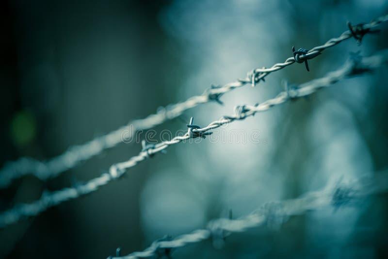 Linien des Stacheldrahts, zum der Grenze abzugrenzen stockfotografie