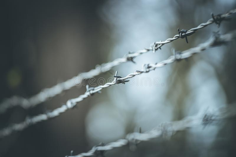 Linien des Stacheldrahts, zum der Grenze abzugrenzen lizenzfreies stockbild