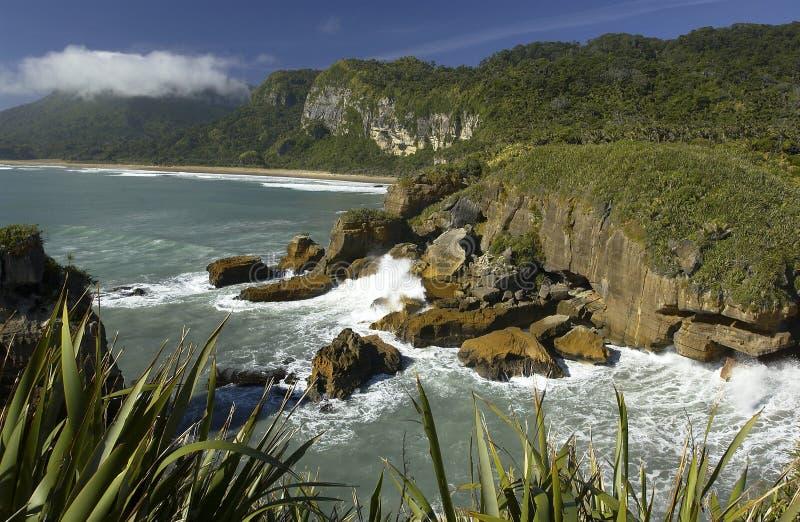 linii brzegowej wyspa nowy południowy Zealand fotografia royalty free