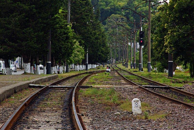 Linii kolejowej Zielona ścieżka zdjęcia royalty free